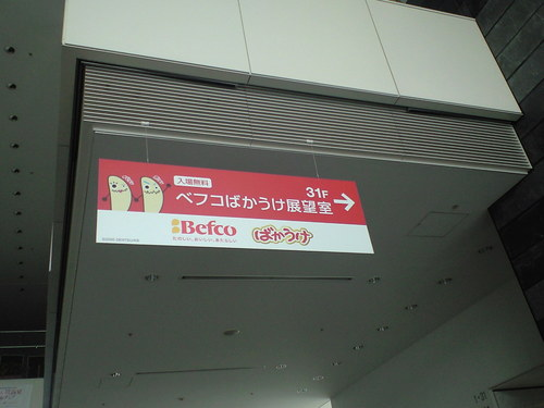 CA390049.JPG